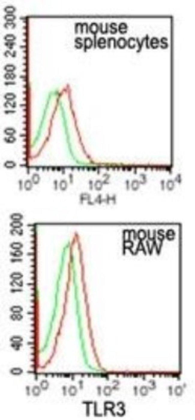 anti-TLR3, Polyclonal, Novus Biologicals:Antibodies:Primary Antibodies
