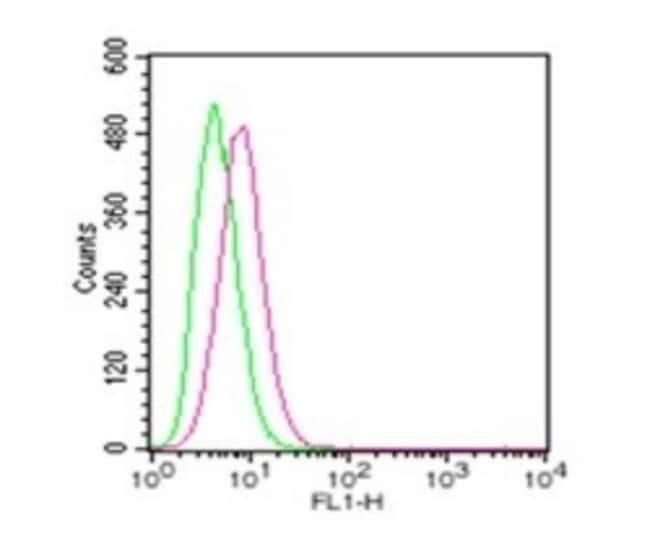 anti-TLR4, Polyclonal, Novus Biologicals:Antibodies:Primary Antibodies
