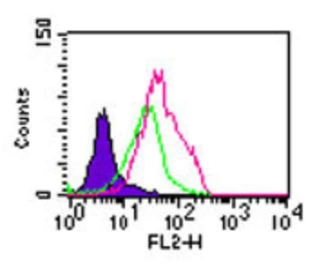 anti-TLR5, Polyclonal, Novus Biologicals:Antibodies:Primary Antibodies