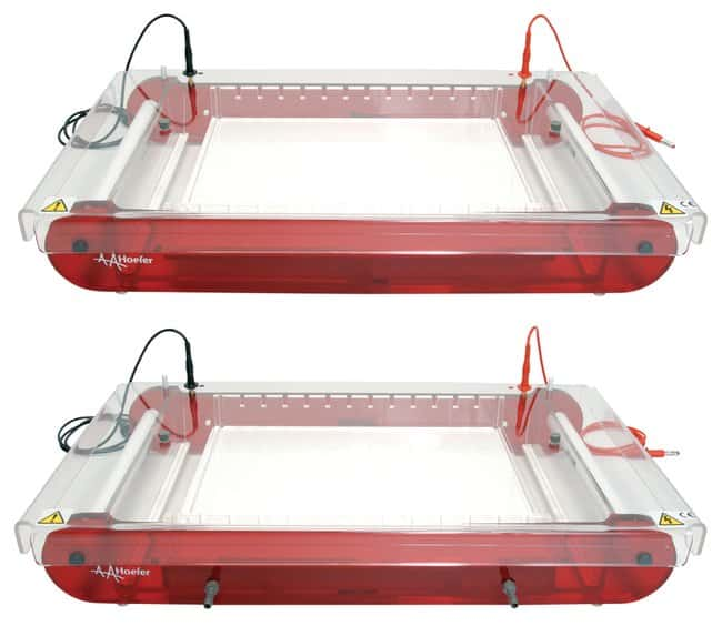 Hoefer™Maxi-Plus and Maxi-Plus Submarine Gel Electrophoresis Units