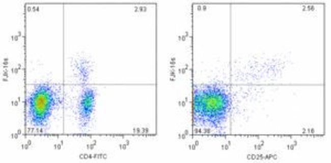 FOXP3 Rat anti-Bovine, Canine, Feline, Mouse, Porcine, Rat, Biotin, Clone: FJK-16s, eBioscience™: Primary Antibodies - Alphabetical Primary Antibodies