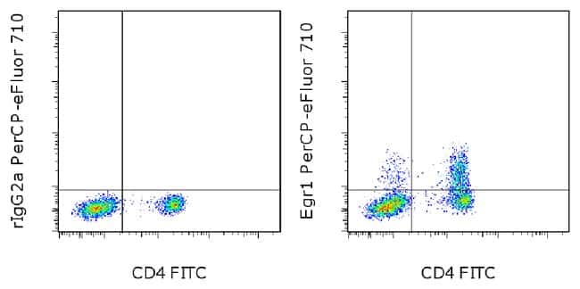 Egr1 Rat anti-Human, PerCP-eFluor 710, Clone: HEGR1DS, eBioscience™ 25 tests; PerCP-eFluor 710 Primary Antibodies E1 to Eh