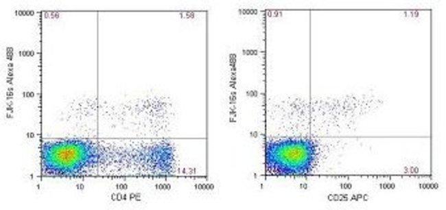 foxp3 alexa fluor 488 clone fjk 16s ebioscience