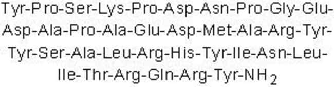 Tocris BioscienceNeuropeptide Y (human, rat) 200ug:Biochemical Reagents