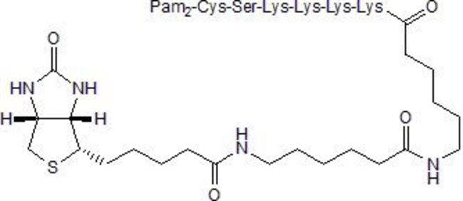 Tocris Bioscience Pam2CSK4 Biotin  100ug:Life Sciences