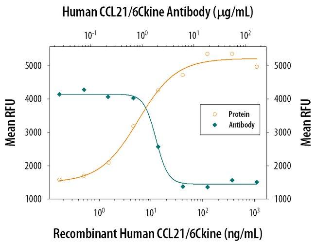 CCL21/6Ckine Goat anti-Human, Polyclonal, R 25µg; Unlabeled:Life Sciences