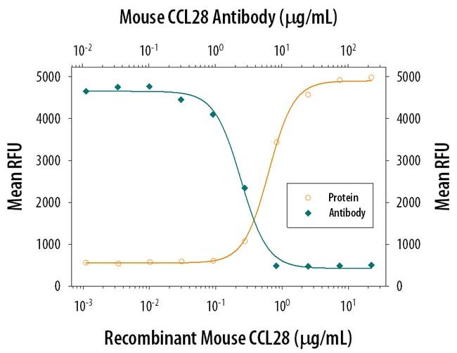 CCL28 Rat anti-Mouse, Clone: 134306, RD Systems:Antibodies:Primary Antibodies