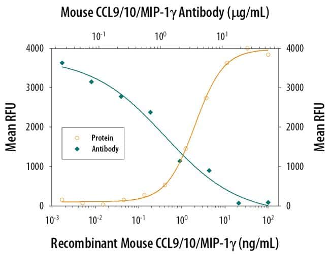 CCL9/10/MIP-1 gamma Rat anti-Mouse, Clone: 62105, RD Systems:Antibodies:Primary