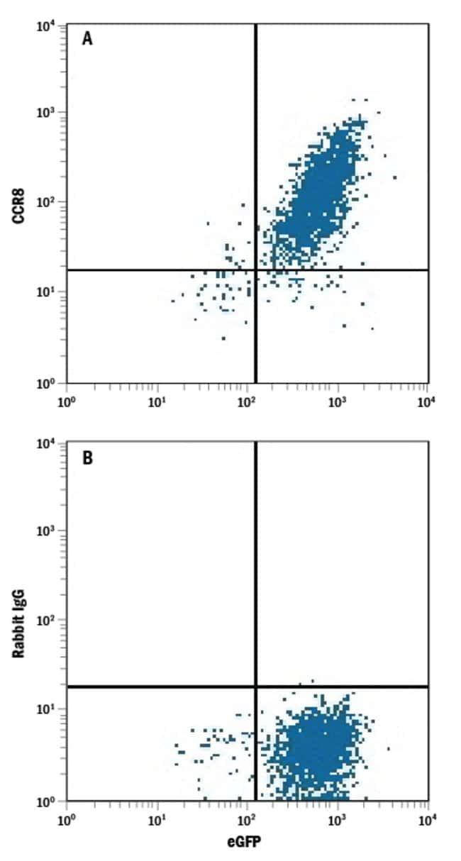 anti-CCR8, APC, Clone: 1055c, R 25 Tests; APC:Life Sciences