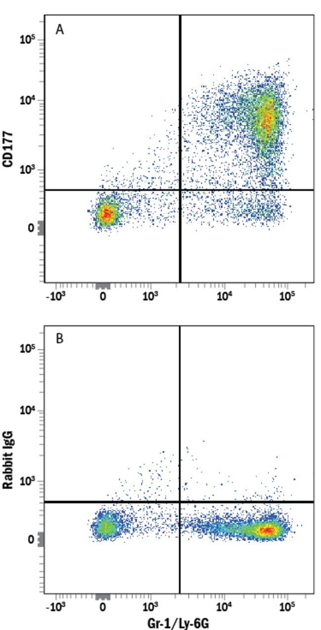 Rabbit anti-CD177, Alexa Fluor 488, Clone: 1171A, RD Systems 25 Tests;