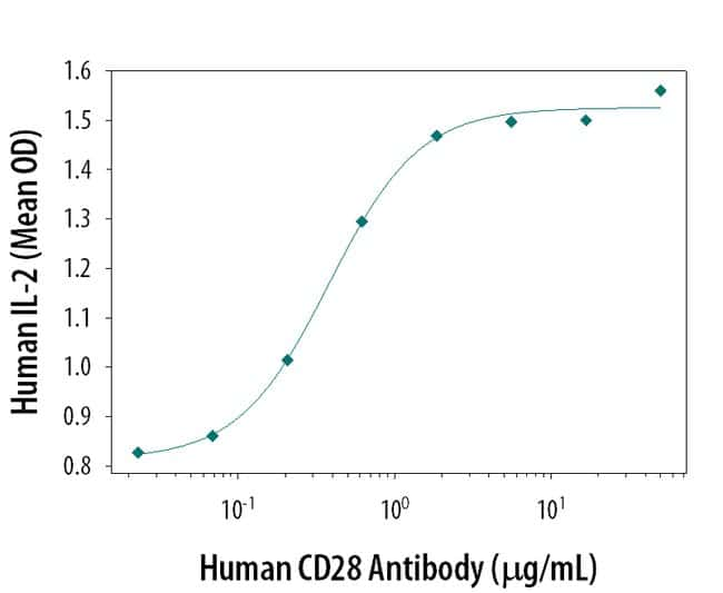 CD28 Goat anti-Human, Polyclonal, R 25µg; Unlabeled:Life Sciences