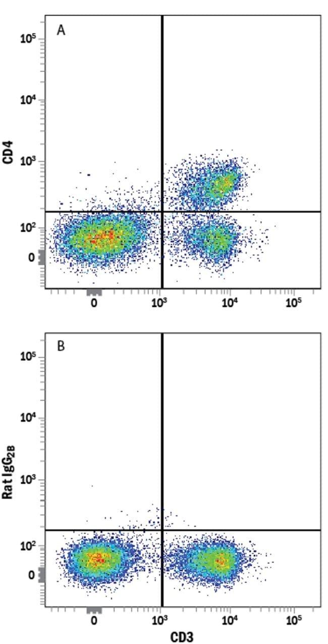 anti-CD4, Clone: GK1.5, RD Systems:Antibodies:Primary Antibodies