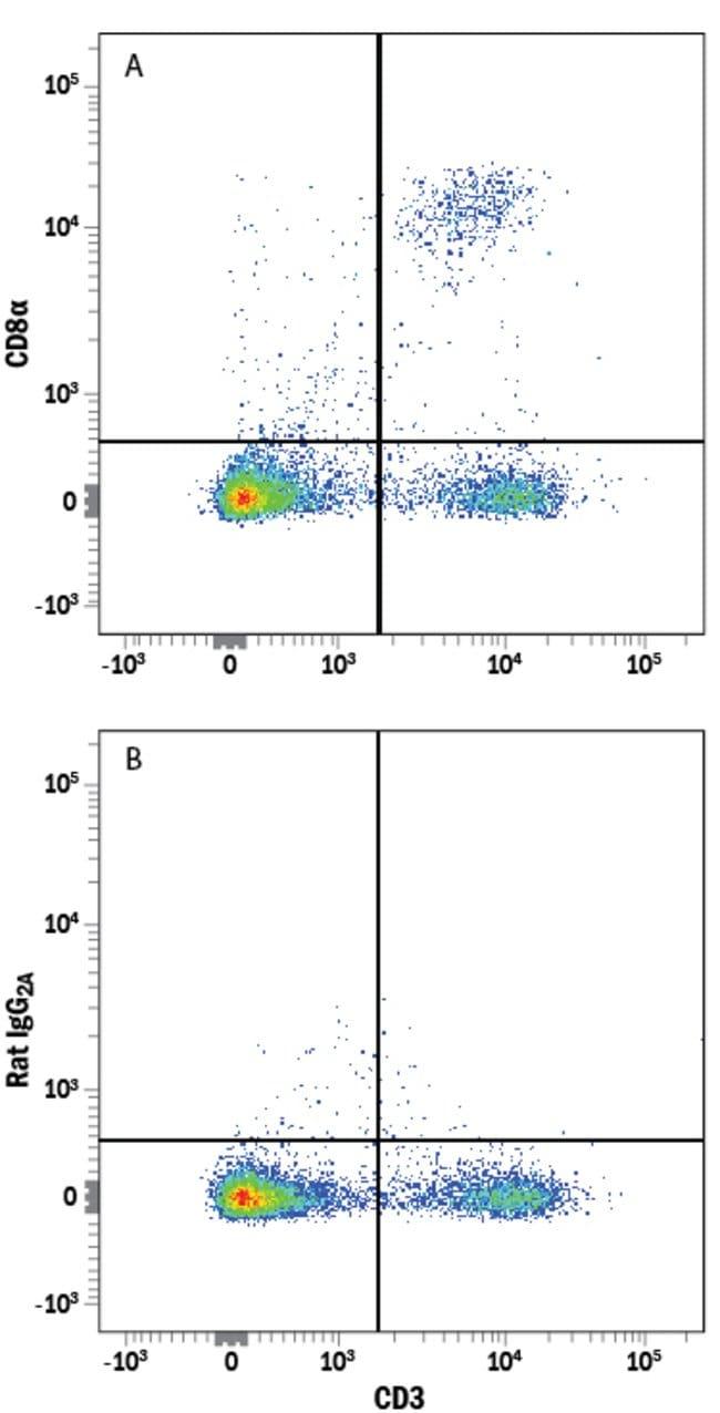 anti-CD8, Alexa Fluor 647, Clone: 53-6.7, RD Systems:Antibodies:Primary