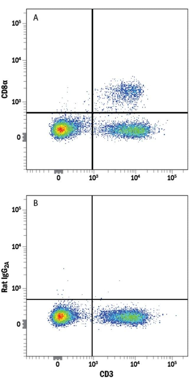 anti-CD8, Clone: 53-6.7, RD Systems:Antibodies:Primary Antibodies