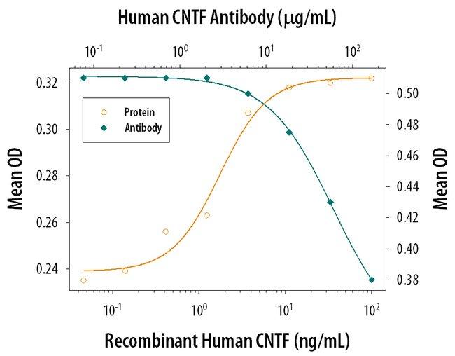 CNTF Goat anti-Human, Polyclonal, R&D Systems™ 1mg; Unlabeled CNTF Goat anti-Human, Polyclonal, R&D Systems™