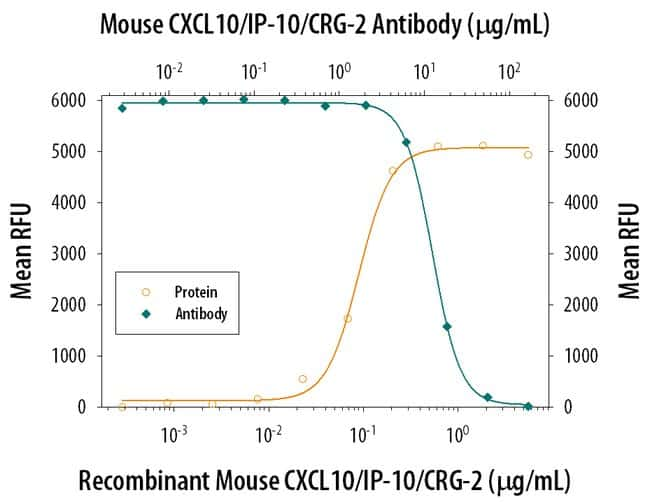 CXCL10/IP-10/CRG-2 Rat anti-Mouse, Clone: 134013, RD Systems:Antibodies:Primary