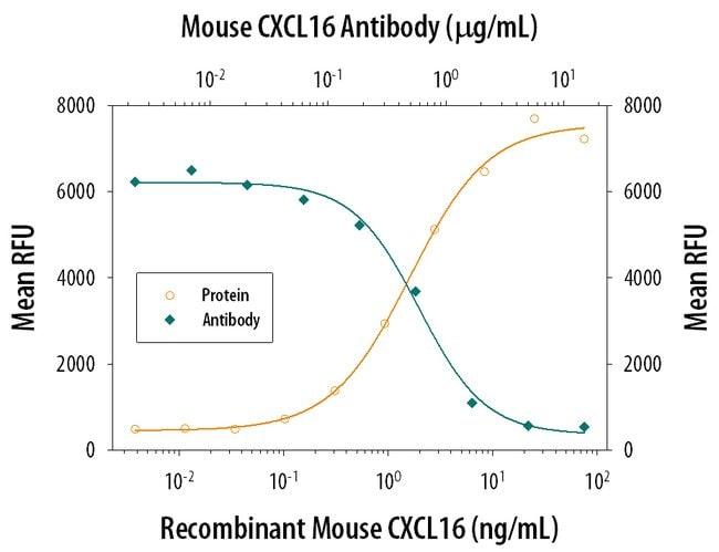 CXCL16 Rat anti-Mouse, Clone: 142417, RD Systems:Antibodies:Primary Antibodies