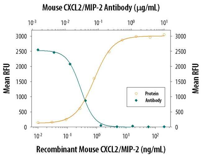 CXCL2/GRO beta/MIP-2/CINC-3 Goat anti-Mouse, Polyclonal, R 25µg; Unlabeled:Life