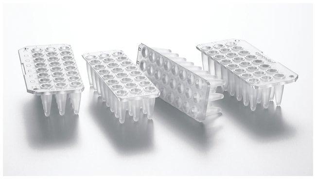 Eppendorf 96-Well twin.tec PCR Plates :Life Sciences:Molecular Biology