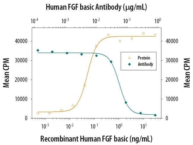 FGF basic Goat anti-Human, Polyclonal, R  100µg; Unlabeled
