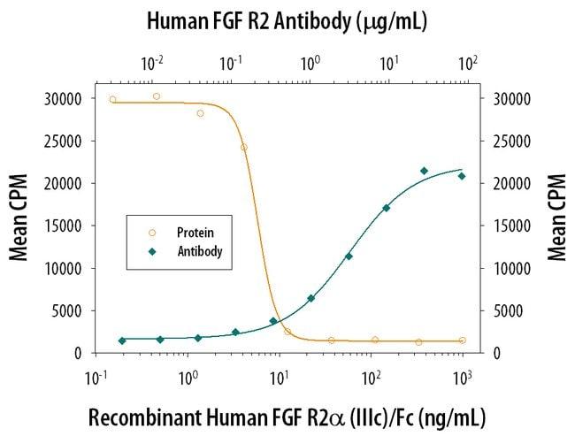FGF R2 Mouse anti-Human, Clone: 98725, RD Systems:Antibodies:Primary Antibodies