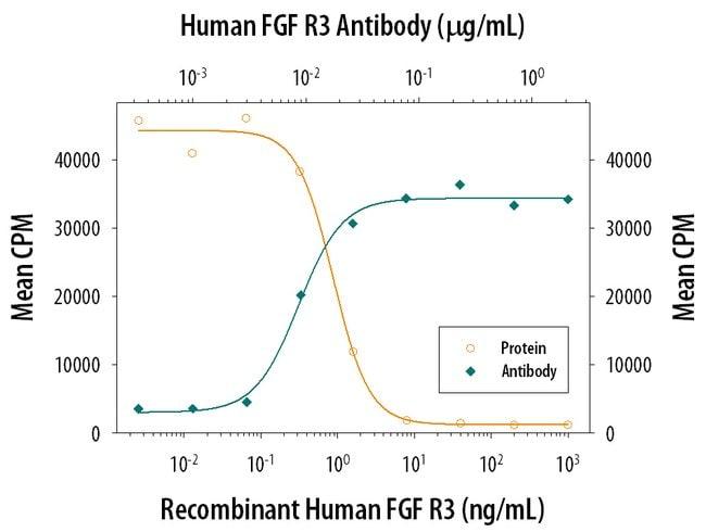 FGF R3 Mouse anti-Human, Clone: 136318, RD Systems:Antibodies:Primary Antibodies