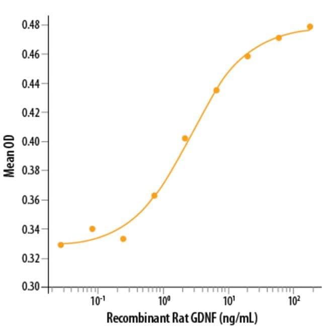 R Rat GDNF Recombinant Protein  50ug:Life Sciences