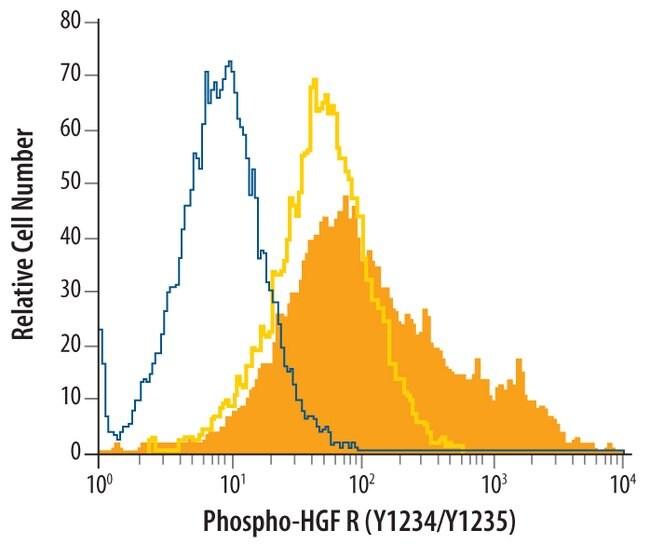 HGFR/c-MET (p Tyr1234, p Tyr1235) Rabbit anti-Human, Mouse, Polyclonal,