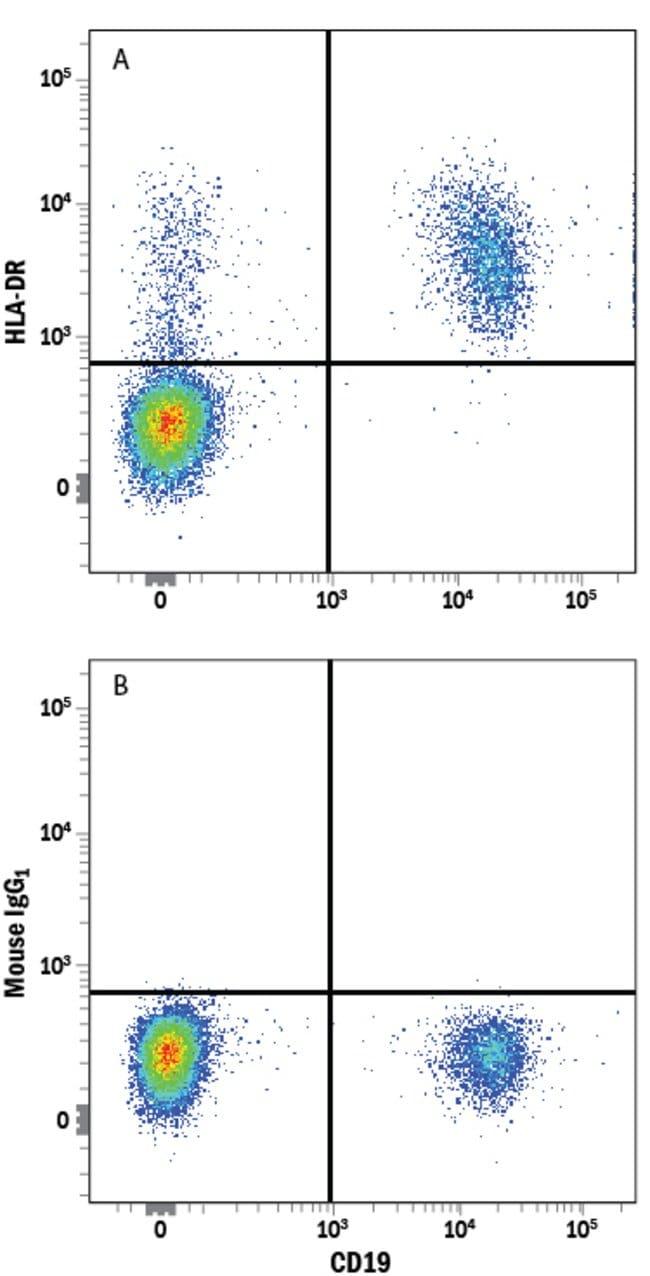 anti-HLA-DR, Clone: L203, RD Systems:Antibodies:Primary Antibodies