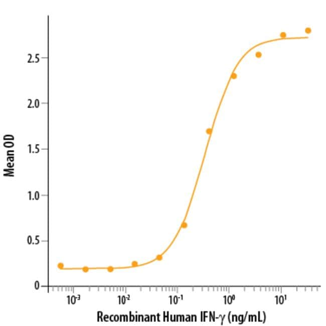 R&D Systems™Human IFN-gamma Recombinant Protein 100ug; Carrier Free R&D Systems™Human IFN-gamma Recombinant Protein