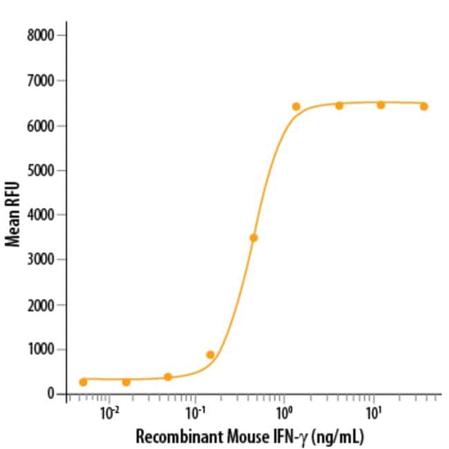 R Mouse IFN-gamma Recombinant Protein  100ug; Carrier Free:Life Sciences