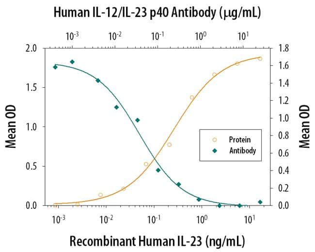 IL-12/IL-23 p40 Mouse anti-Human, Clone: 24901, RD Systems:Antibodies:Primary
