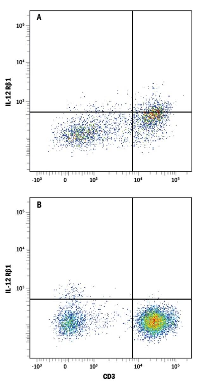 anti-IL-12 R beta 1, Fluorescein, Clone: 69310, RD Systems 100 Tests; Fluorescein:Antibodies