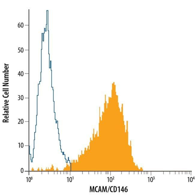 anti-MCAM/CD146, Fluorescein, Clone: 128018, RD Systems 25 Tests; Fluorescein:Antibodies