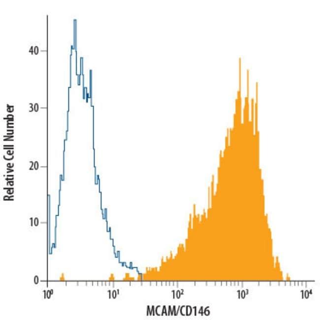 anti-MCAM/CD146, PE, Clone: 128018, RD Systems 100 Tests; PE:Antibodies