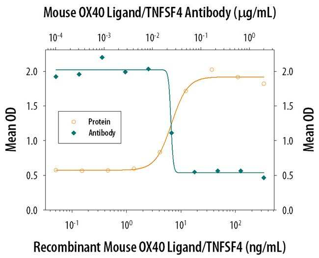 OX40 Ligand/TNFSF4 Rat anti-Mouse, Clone: 182601, RD Systems:Antibodies:Primary