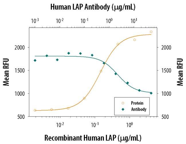 LAP (TGF-beta 1) Mouse anti-Human, Clone: 27235, RD Systems:Antibodies:Primary