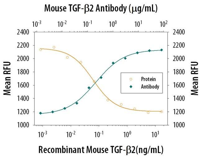 TGF-beta 2 Rat anti-Mouse, Clone: 771213, RD Systems:Antibodies:Primary