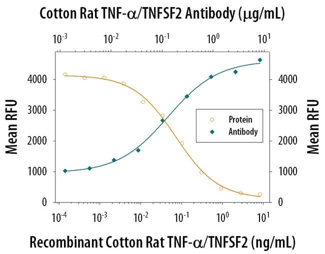 TNF-alpha Mouse anti-Cotton Rat, Clone: 159811, R 25µg; Unlabeled:Life