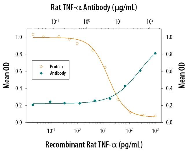 TNF-alpha Mouse anti-Rat, Clone: 45418, RD Systems:Antibodies:Primary Antibodies