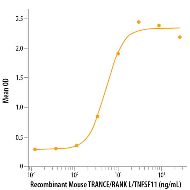 R Mouse TRANCE/TNFSF11/RANK L Recombinant Protein  10ug; Carrier Free:Life