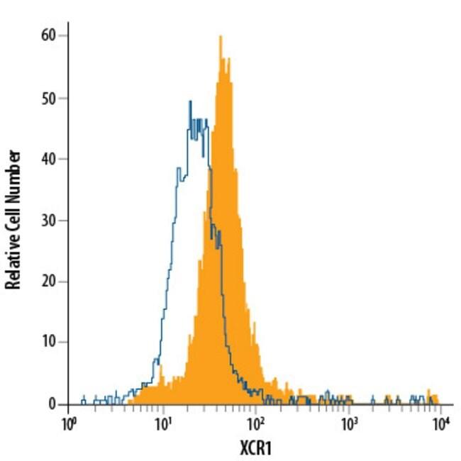 anti-Human XCR1, Fluorescein, Polyclonal, RD Systems 25 Tests; Fluorescein:Antibodies
