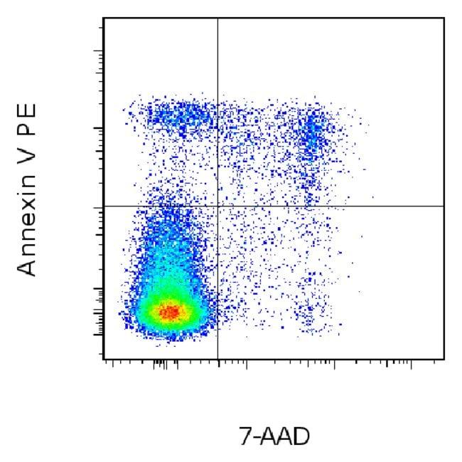 Invitrogen eBioscience Annexin V Apoptosis Detection Kit PE :Life Sciences:Cell