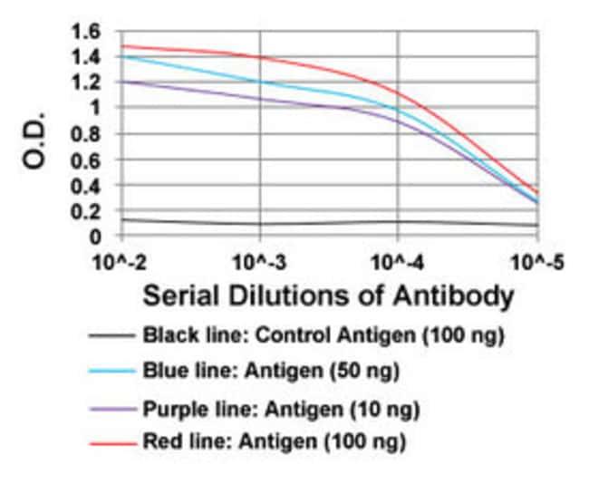 HPRT1 Mouse anti-Human, Clone: 5F11A7, Abnova 100μg; Unlabeled:Antibodies