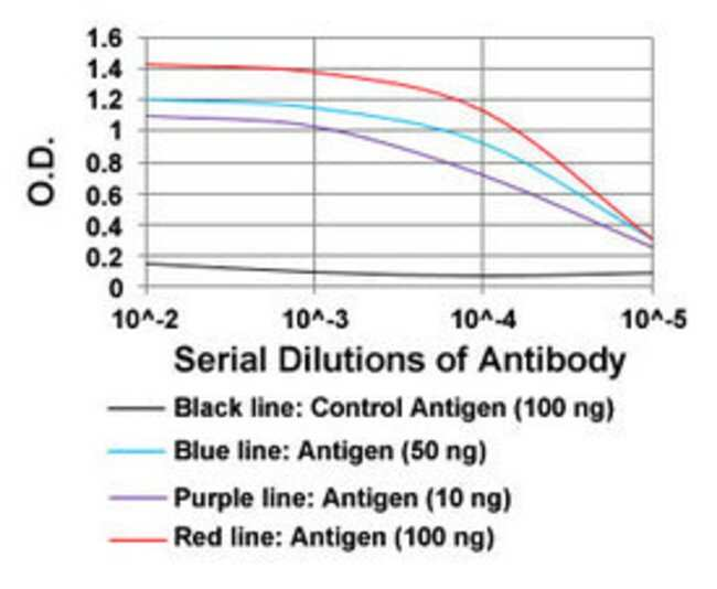 PPARGC1B Mouse anti-Human, Clone: 6C3F6, Abnova 100μg; Unlabeled:Antibodies