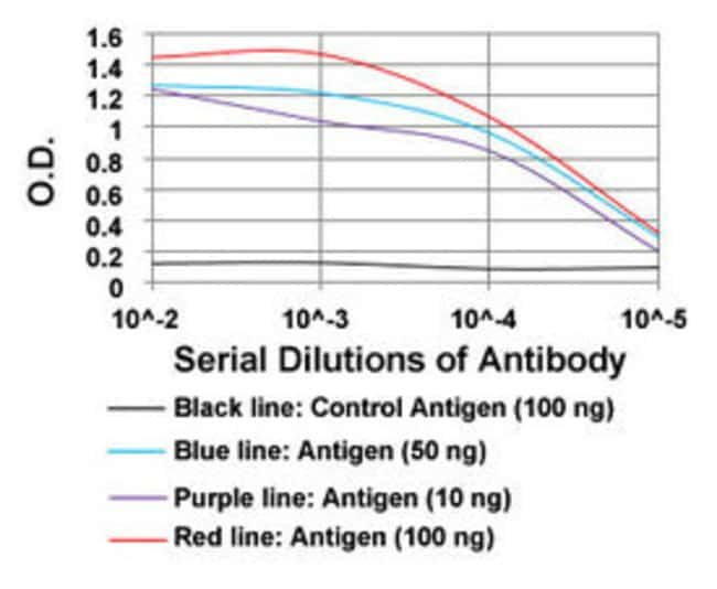 MSTN Mouse anti-Human, Clone: 6E4B2, Abnova 100μg; Unlabeled:Antibodies