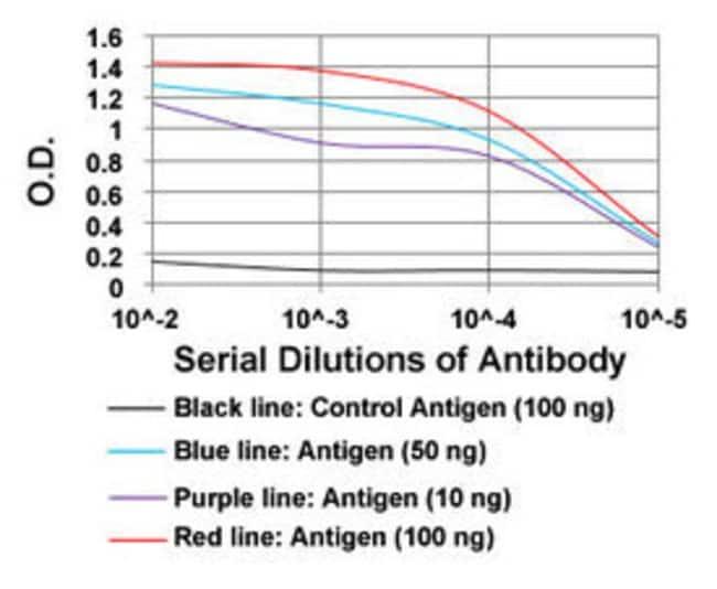 ROR2 Mouse anti-Human, Clone: 6F2D10, Abnova 100μg; Unlabeled:Antibodies