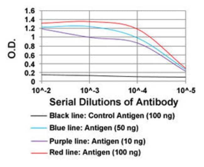 CDKN2A Mouse anti-Human, Clone: 1D7D2A1, Abnova 100μg; Unlabeled:Antibodies