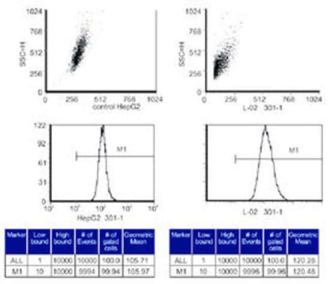 S-Adenosylmethionine Mouse, Clone: 118-6, Abnova 25μL; Unlabeled:Antibodies