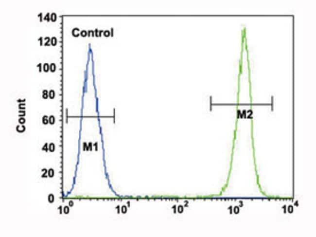 ACTA1 Mouse anti-Human, Clone: 337CT30.10.1, Abnova 400μL; Unlabeled:Antibodies